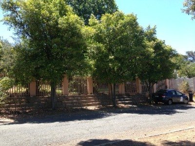 On Auction -  Property On Auction in Kenridge,   Durbanville