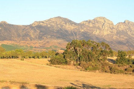 On Auction -  Plot On Auction in Stellenbosch