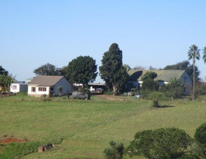 On Auction -  Farm On Auction in Mossel Bay