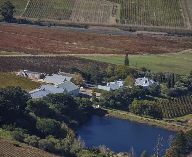 On Auction -  Farm On Auction in Stellenbosch