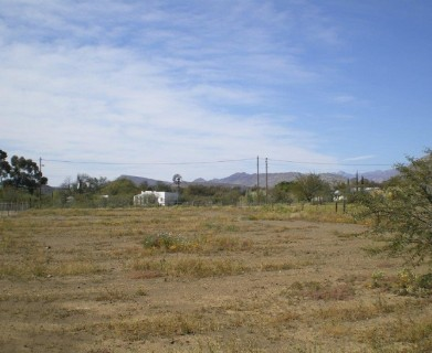 On Auction -  Plot On Auction in Prince Albert