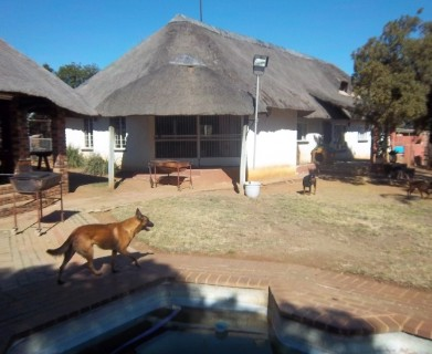 On Auction -  House On Auction in Centurion