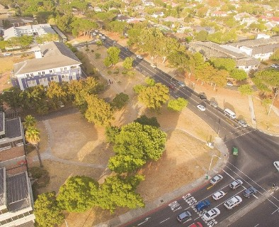 On Auction -  Land On Auction in Pinelands