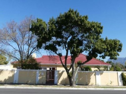 On Auction -  Property On Auction in Thornton