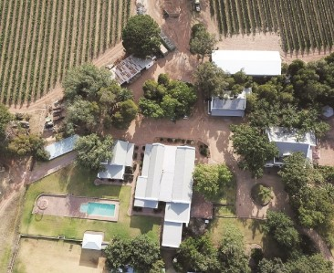 On Auction -  Farm On Auction in Sir Lowrys Pass