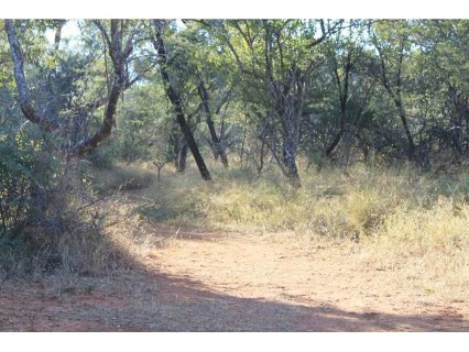 R 4,500,000 -  Farm For Sale in Bela-Bela