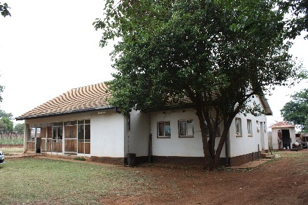 On Auction -  Farm On Auction in Skeerpoort
