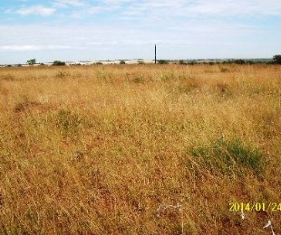 R 112,000 -  Land For Sale in Flamingo Park
