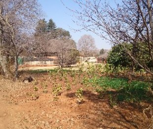 R 3,500,000 - 5 Bed Smallholding For Sale in Hekpoort
