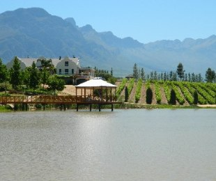 R 18,700,000 -  Farm For Sale in Tulbagh