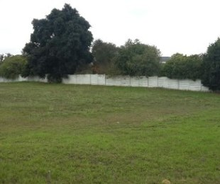 R 1,400,000 -  Land For Sale in Proteaville