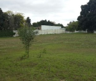 R 1,400,000 -  Plot For Sale in Proteaville