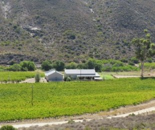 R 5,999,000 - 5 Bed Smallholding For Sale in Montagu