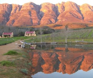 R 5,900,000 -  Farm For Sale in Tulbagh