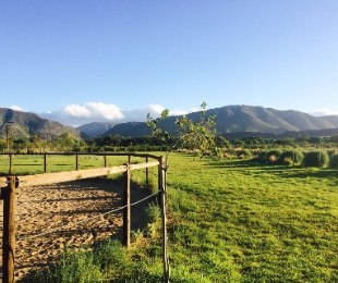 R 2,300,000 -  Smallholding For Sale in Prince Albert