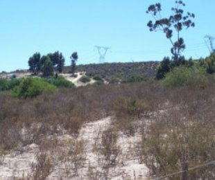 R 6,300,000 -  Farm For Sale in Redelinghuys