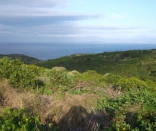 R 650,000 -  Land For Sale in Pinnacle Point Golf Estate