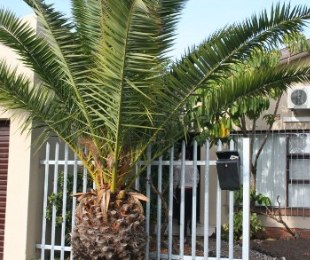 R 1,350,000 - 3 Bed Property For Sale in Richwood