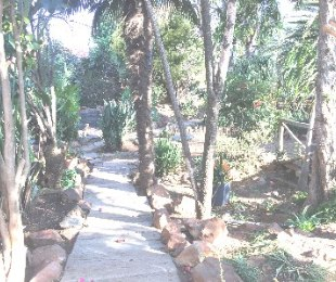R 8,500 - 3 Bed House To Let in Discovery