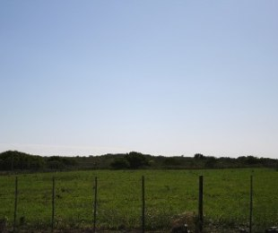R 5,775,000 - 5 Bed Farm For Sale in Mossel Bay