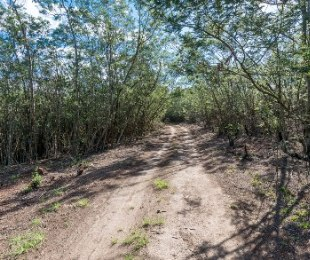 R 1,400,000 -  Smallholding For Sale in Wilderness Heights