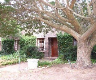 R 16,000 - 4 Bed House To Let in Vermont