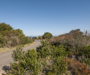 R 660,000 -  Plot For Sale in Betty's Bay