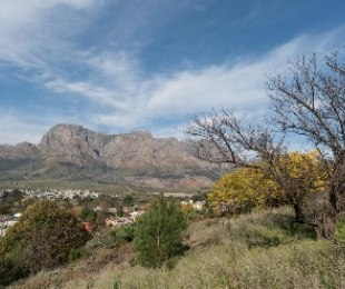 R 3,200,000 -  Plot For Sale in Pniel