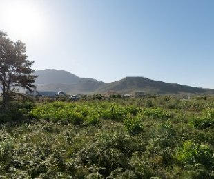 R 590,000 -  Land For Sale in Heuningkloof