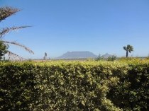 R 2,795,000 - 3 Bedroom, 3 Bathroom  Property For Sale in Flamingo Vlei