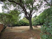 R 8,400,000 -  Plot For Sale in Waterkloof