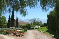 R 6,200,000 -  Smallholding For Sale in Tulbagh, Ceres