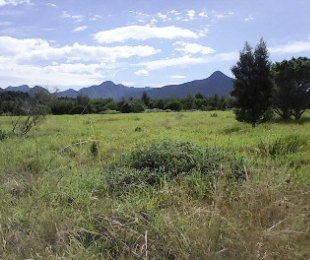 R 1,260,000 -  Plot For Sale in Tsitsikamma