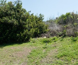 R 2,400,000 -  Land For Sale in Oubaai