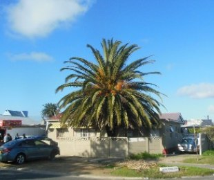 R 1,175,000 - 4 Bed Property For Sale in Brooklyn