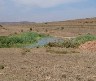 R 610,450 -  Land For Sale in Hartenbos