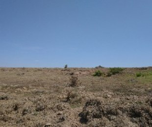 R 449,000 -  Plot For Sale in Hartenbos