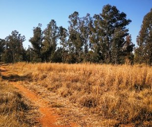 R 550,000 -  Plot For Sale in Valley Settlements