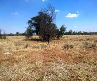 R 375,000 -  Plot For Sale in Apple Orchards