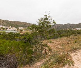 R 385,000 -  Land For Sale in Island View