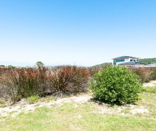 R 1,100,000 -  Plot For Sale in Goose Valley