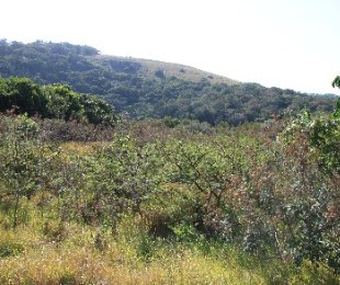R 550,000 -  Land For Sale in Kayser's Beach