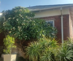 R 9,000 - 3 Bed Property To Rent in Kensington